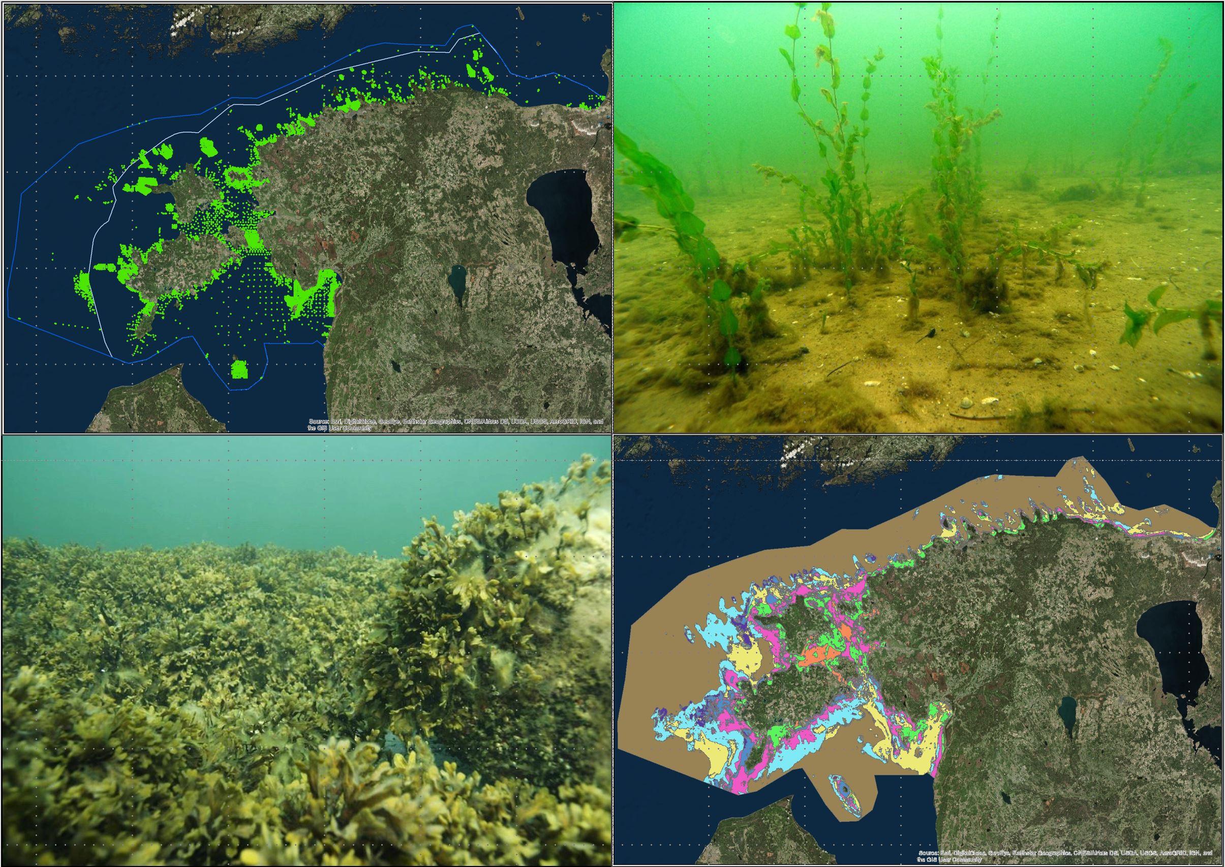 Potential visual display of GIS portal data layers